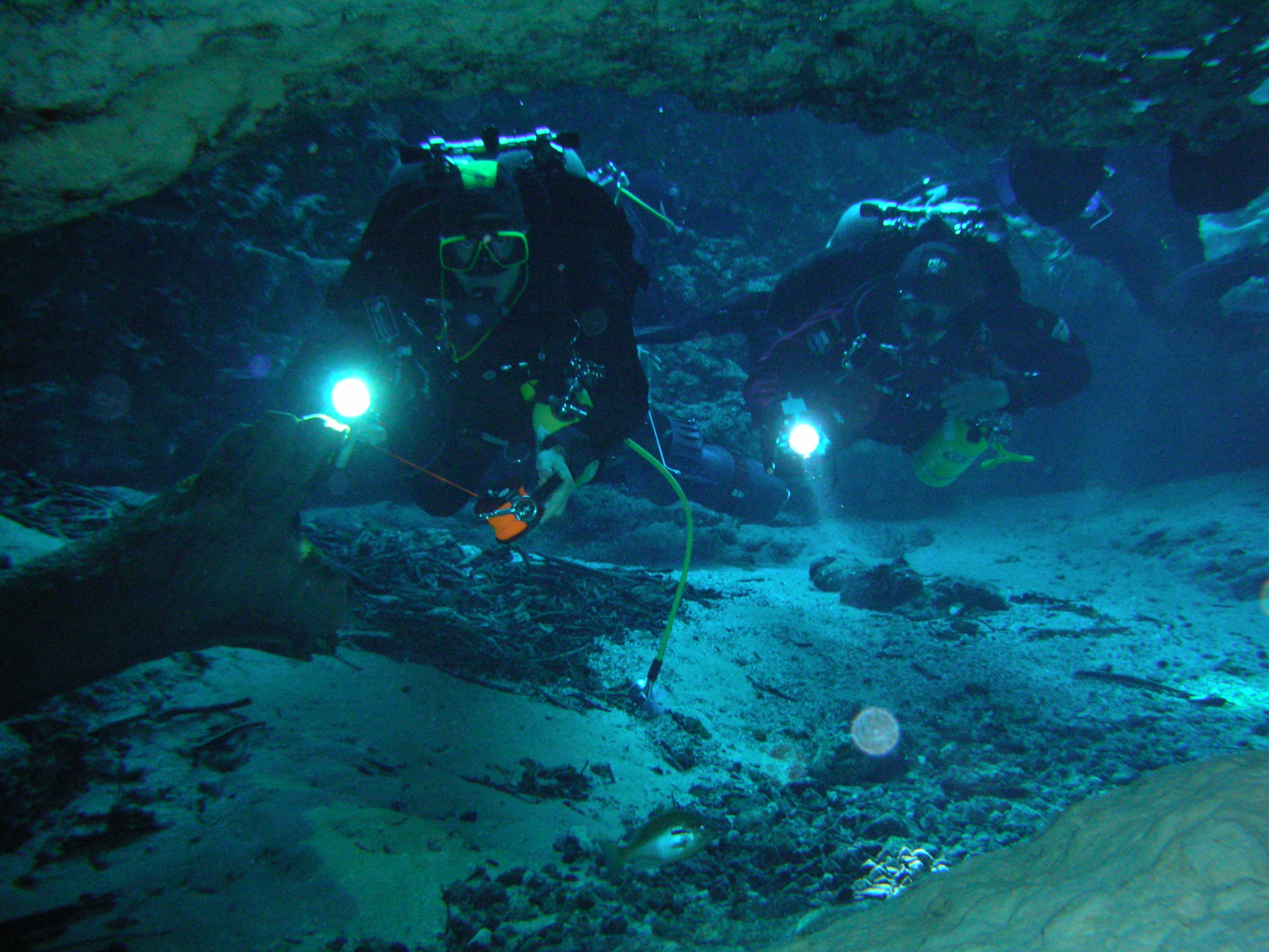 The Cave Environment And Conservation