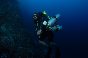 Mission Coelacanth: Dive 1 Report