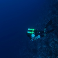 Conclusion of Coelacanth Dive Expedition July 2012 - Manado, Indonesia