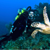 Discover Tec Diving in the Cayman Islands